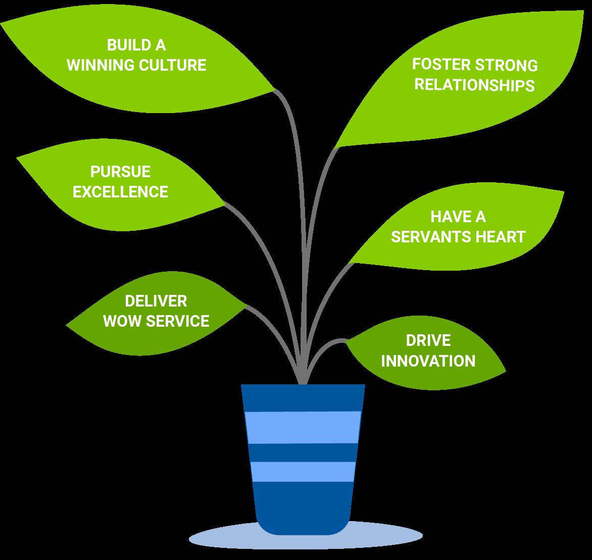Values plant illustration